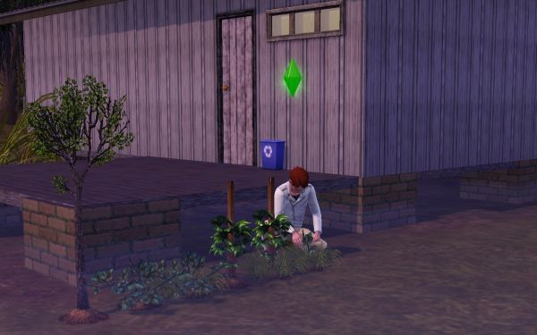Screenshot Sims 3 (gardening)