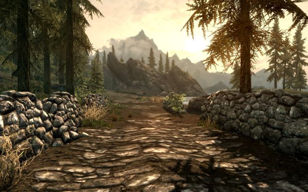 Skyrim road into wilderness